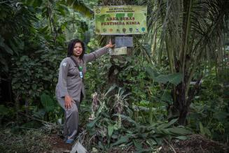 2014_ICCOMMS_INDONESIA_NAT_forest woman_(c)FSC GD_Vlad Sokhin_0155.jpg